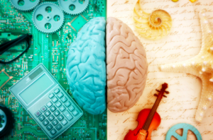 Colorful image, photo-like, depicting two contrasting sides of the brain. Left, blue-hued, with calculator and computer circuitry. The right, yellow-hued, with a violin and seashells.