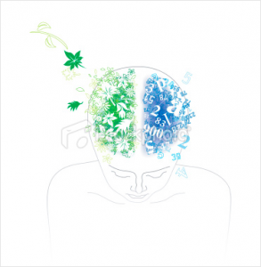 Drawing of the top of a person peering into his/her brain: right side, with green living things flowing out, and the blue left with numbers
